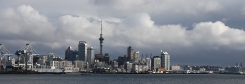 Auckland skyline.  Photo by Diana Painter.